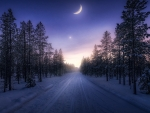 Winter Night Road