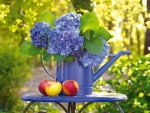 Apples and hydrangeas