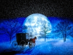 The Magic of a Blue Winter Night