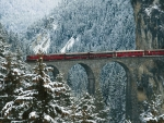 Train Crossing Bridge in the Mountains