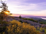 Golden hour on Cadillac Mountain, Maine