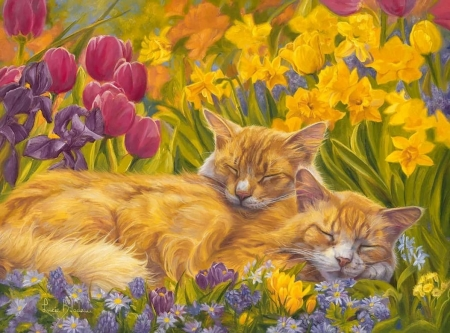 Nap time - art, sleep, daffodils, yellow, nap, cat, painting, flower, garden, tulips, pictura, pink, pisici, lucie bilodeau, couple
