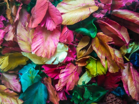 Leaves - leaf, autumn, green, texture, toamna, pink, skin