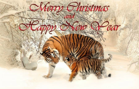 Merry Christmas and Happy New Year - tigers, nature, snow, holiday