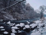 Snowy river, south Germany black forest