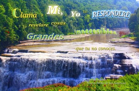 Clama a Dios y te Respondere - water, Bible, waterfall, flowers, river, canyon, trees