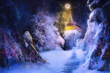 Winter night - forest, owl, luna, cottage, olga rogovets, luminos, winter, iarna, moon, fantasy, bufnita, bird, snow, pasari, night