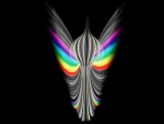 Wings of a Rainbow