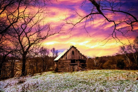 Winter Golds over the Barn - trees, frosty, colors, ice, sunset, sky, landscape