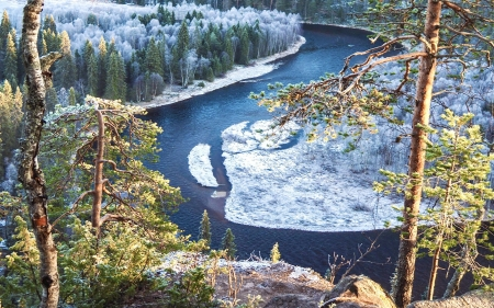 Winter at Snake River, Wyoming - trees, snow, usa, forest, water, bow