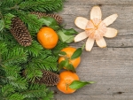Mandarins and Pine Cones