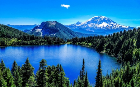 Mt. Rainier, Washington - sky, trees, usa, lake, landscape