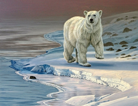 Polar Bear - arctic, white, bear, painting, animal, cold