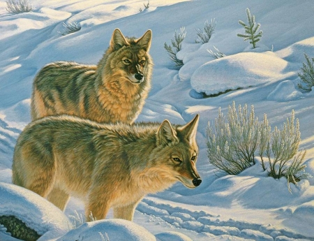 Long Winter - white, snow, wolves, winter, painting