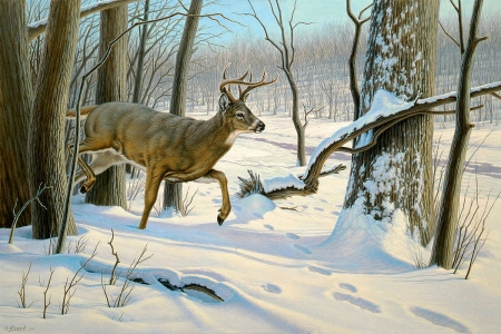 Breaking Cover - forest, trees, snow, deer, painting