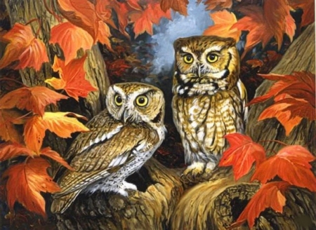 Owls in Autumn - autumn, leaves, two, owls