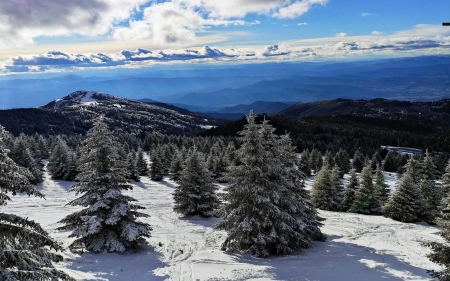 Kopaonik Mountain, Serbia - trees, snow, landscape, hills, clouds, sky