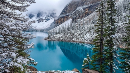 Moraine Lake, Banff NP - snow, mountains, canada, alberta, trees, winter