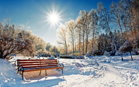 Sunny Winter Morning - bench, sun, trees, snow, sky