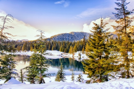 Mountain and lake in winter - reflection, lake, winter, forest, Austria, view, trees, mountain, snow, serenity, scene