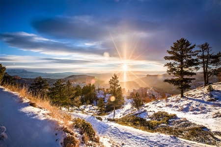 winter landscape - countryside, sun, snow, trees