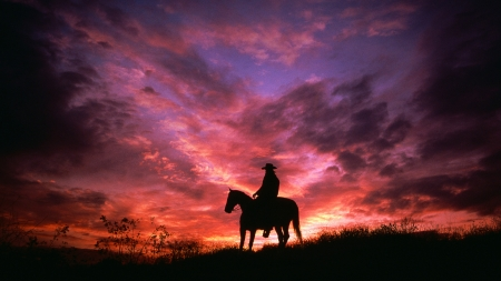Cowboy silhouette and sunset - cal, man, mick roessler, sunset, pink, silhouette, horse, cowboy