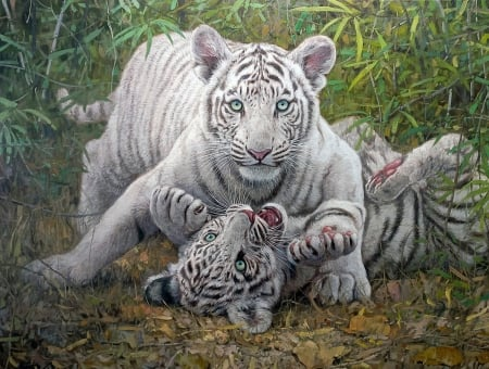 White Tigers playing - painting, young, tiger, white, play