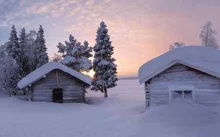 Winter Morning in Sweden