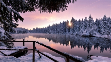 lake in forest - reflection, trees, winter, lake