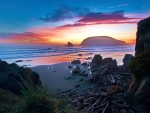 Harris Beach State Park in Oregon