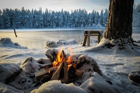 A camp fire at a frozen lake - river, winter, lake, forest, camp, bench, beautiful, fire, tree, snow, frozen, frost