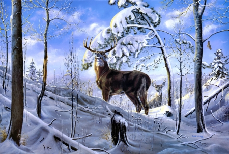 Appalachian High - high, Appalachian, roe, winter, deer, couple, art, forest, beautiful, snow, painting