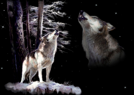 Wolf howling memory