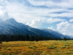 Grand Teton National park has great views from the road