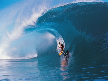 Surfing in Hawaii - Water, Sea, Outdoor, Man, Sports