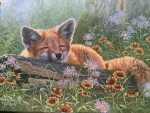 Sleeping fox by Abraham Hunter