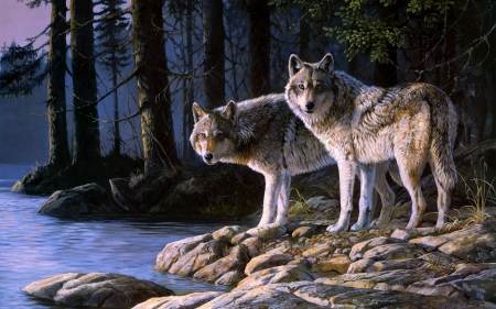 Wolves - wolf, pictura, art, lup, painting, couple