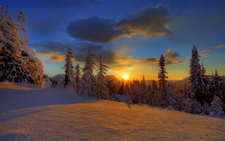 Beautiful Winter Sunset - sun, winter, sunrise, forest, mountain, skies, sunset, summit, trees, nature