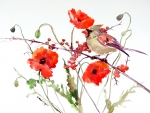 Bird and poppies