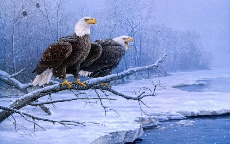 Eagles - bird, painting, eagle, pasari, pictura, winter, couple, art, iarna, snow