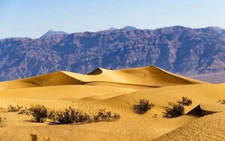 Desert - sand, desert, dunes, mountains