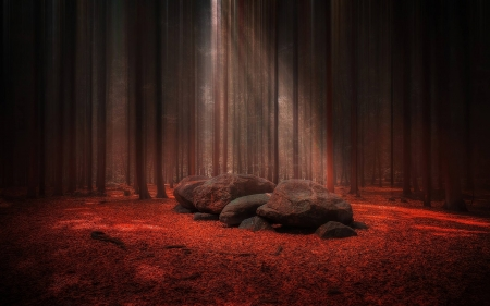 Red Forest Glade With Stones