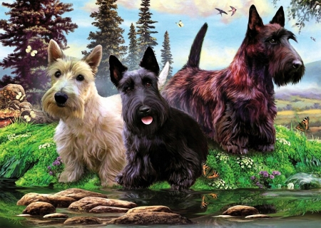 Scottie Brothers - painting, water, trees, dogs