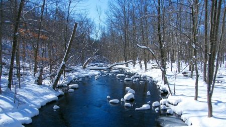 Blue River - forest, ice, trees, snow, sky