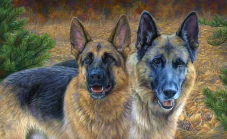 German Sheperd - painting, two, animals, dogs