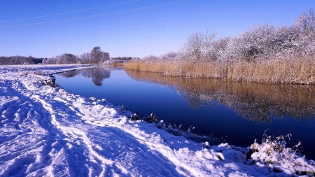 Beautiful Winter in Northern Germany - water, trees, snow, sky, grass