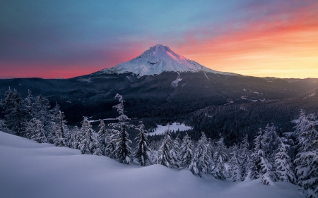 Mt Hood is best with a fresh coat of snow - oregon, forest, usa, sunset, sky, volcano, trees, winter, colors