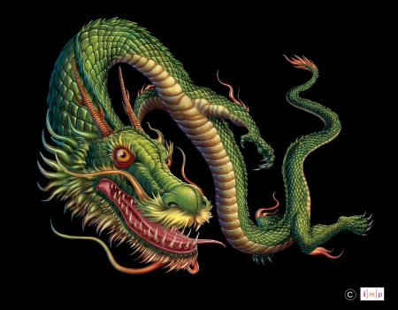 Chinese dragon - subhash vohra, fantasy, dragon, green, black