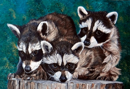 Little Bandits - painting, little, racoons, animals