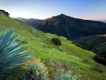 Big Sur in spring, California